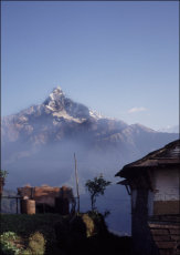 Misty Machapuchare, the Fishtail Mountain, taken from a farm on the trail to Annapurna Base Camp.