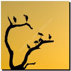 Spoonbills and Cranes