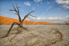 Dead Vlei morning #3