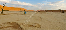 Walker in Dead Vlei