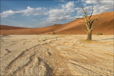 Dead Vlei morning