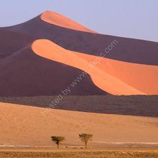 Dunes at sunset (square)