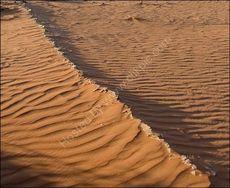 Start of a sand dune