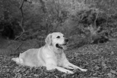 Wilma and Misty-33