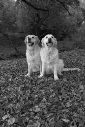Wilma and Misty-47