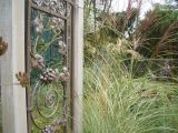 border with arching Miscanthus and Pennisetum  grasses