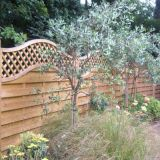 Country style fencing