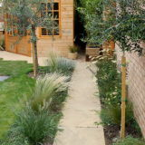 Natural style planting