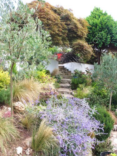 Contemporary retaining walls blended with existing steps gives the garden a new and fresh feel.