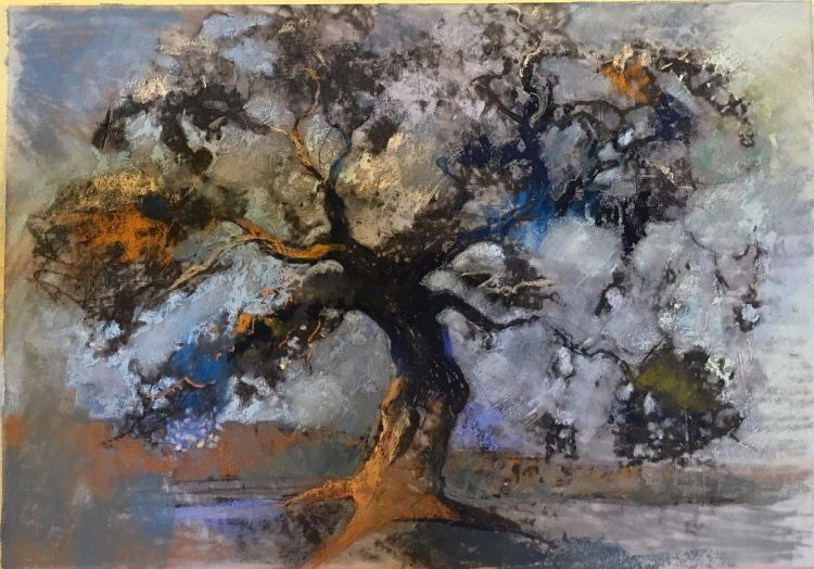 The Old Oak at Acorn Bank
