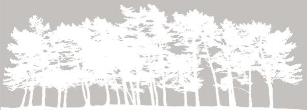 Pine Row White - Code PR1 W