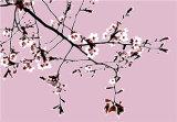 White blossom (Code WB2)