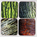 "Drinks Coasters ""Tree Bark Designs"""