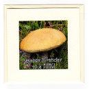 Fungi Birthday