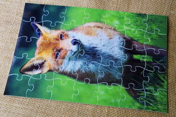 Cardboard Jigsaw Puzzle - Fox (35 Pieces)