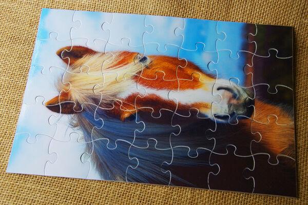 Cardboard Jigsaw Puzzle - Fox (35 Pieces)