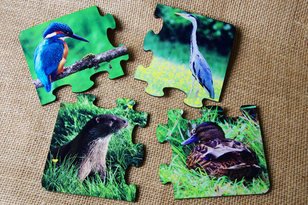 Puzzle Coasters - Riverside Wildlife