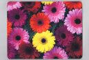 """Bright & Cheerful"" Gerbera Placemat"
