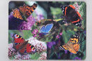 """Butterfly Medley"" Placemat"