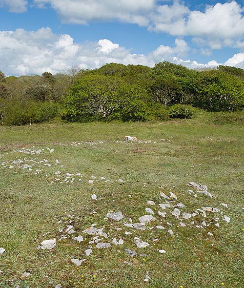 Stackpole Warren - Hut Circles