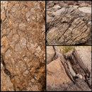 Deformed Sediment Structures