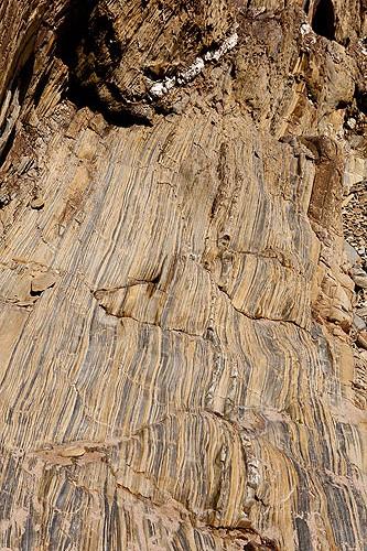 Cambrian Sandstones - Mudstones