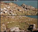 Warrior's Dyke / Celtic Enclosures