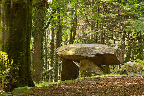 Gwal-y-Filiast , Chambered Tomb / Camarthenshire.
