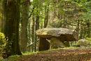 Gwal-y-Filiast , Chambered Tomb / Camarthenshire.