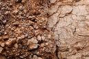 Gash breccia - fault line