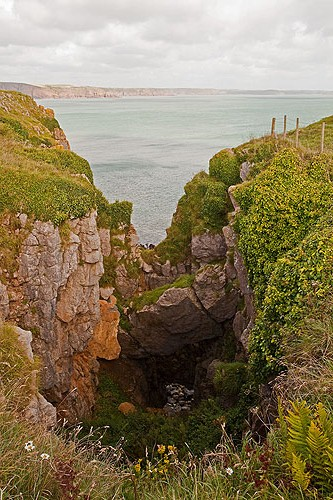 Griffith Lorts Hole