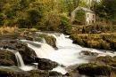 Cenarth Falls / Salmon Leap / Afon Teifi .