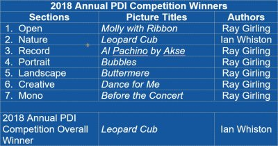 2018 Annual PDI Competition