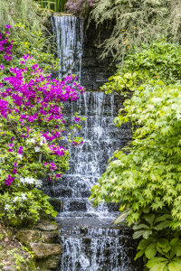 Waterfall at Dorothy Clive Gardens