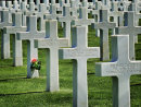 Commended: American Cemetry
