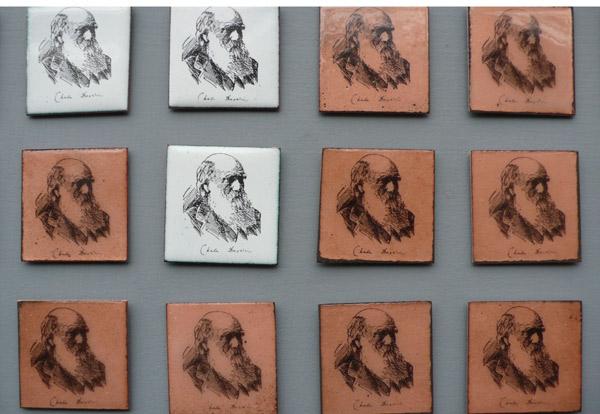 Darwin Badges