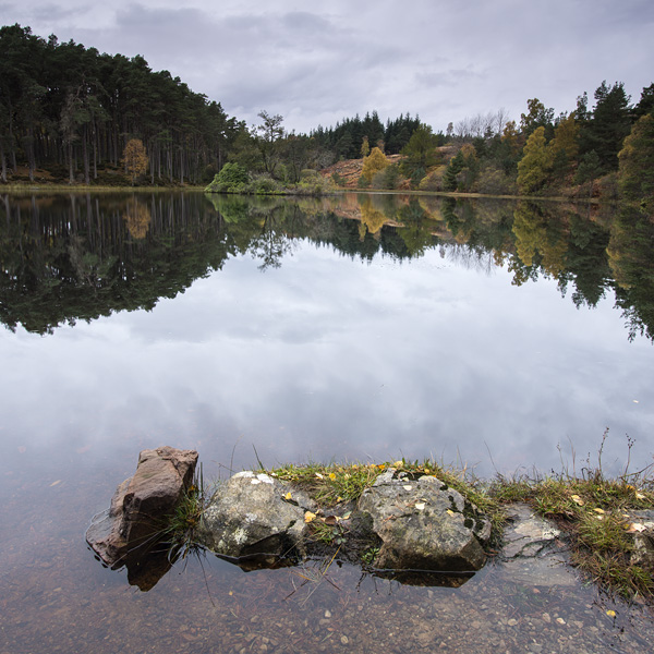 Reflections on the Lochan at Carbisdale Castle