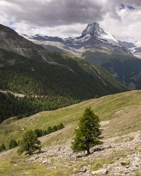 Matterhorn from Sunnegga