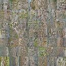 Bark Collage 2