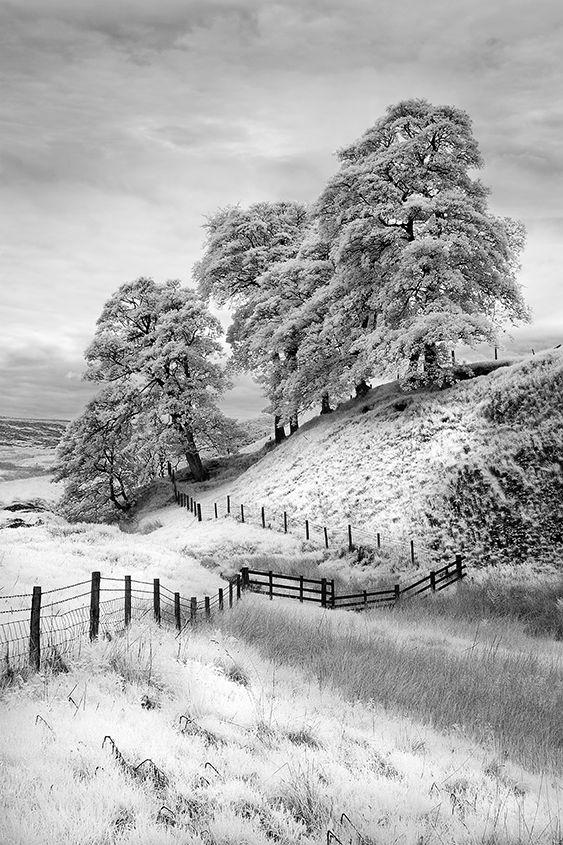 A Derbyshire Landscape