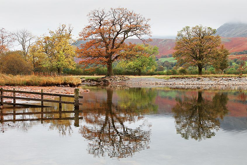 Buttermere Reflects
