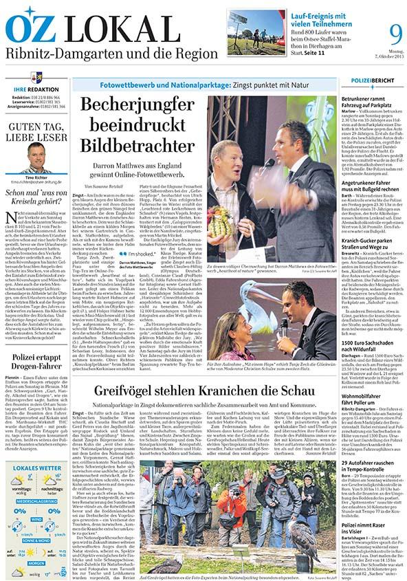 German Paper 2013