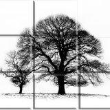 Tree Puzzle No3