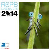RSPB Calendar