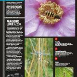 What Digital Camera Mag Nov 2013