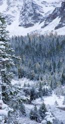 Mt Assiniboine area - 07730
