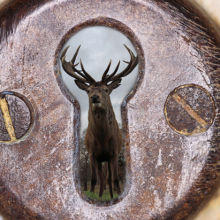 deer through a keyhole