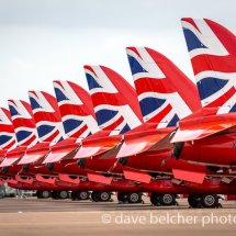 Red Arrow Tail Fins