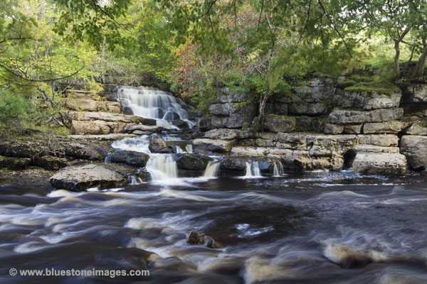 01M-4639 East Gill Lower Falls Meeting the River Swale in Autumn Yorkshire Dales UK.