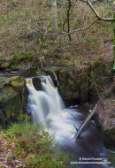 01M-6855 Waterfall in Hareshaw Dene Near Bellingham Northumberland England UK.